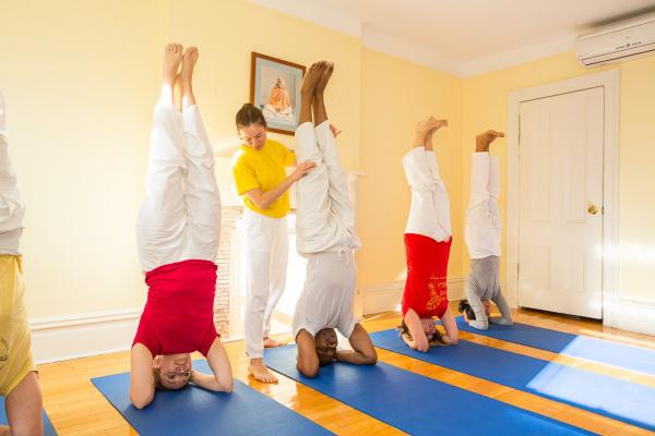 trồng chuối yoga